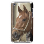 Arab Horses iTouch Case