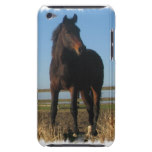 Bay Horse iTouch Case