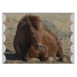 Beautiful Chestnut Icelandic Horse Cutting Board