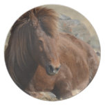 Beautiful Chestnut Icelandic Horse Dinner Plate