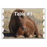 Beautiful Chestnut Icelandic Horse Table Number