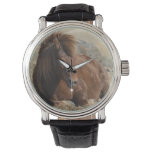 Beautiful Chestnut Icelandic Horse Watch