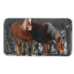 Belgian Draft Horses iTouch Case