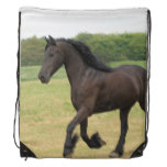 Black Horse Drawstring Backpack