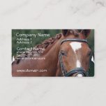 Braided Horse Mane Business Card