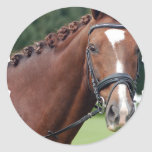 Braided Horse Mane Stickers