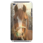 Chestnut Arab Horse iTouch Case