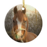 Chestnut Arab Horse Ornament