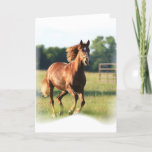 Chestnut Galloping Horse Greeting Card
