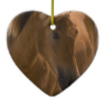 Chestnut Horse Design Ornament