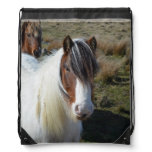 Connemara Pony Drawstring Bag