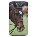 Cute Arabian Horse iTouch Case