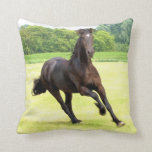 friesian-12.jpg throw pillow