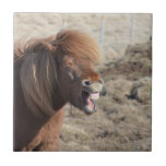 Funny Horse Making a Silly Face Ceramic Tile
