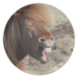 Funny Horse Making a Silly Face Dinner Plate
