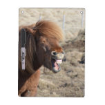Funny Horse Making a Silly Face Dry Erase Board