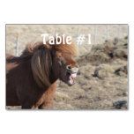 Funny Horse Making a Silly Face Table Number