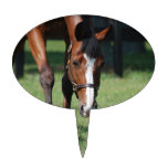 Gorgeous Quarter Horse Cake Topper