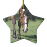 Gorgeous Quarter Horse Ceramic Ornament