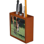 Gorgeous Quarter Horse Desk Organizer