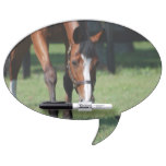 Gorgeous Quarter Horse Dry-Erase Board