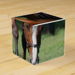 Gorgeous Quarter Horse Favor Box