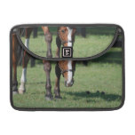 Gorgeous Quarter Horse MacBook Pro Sleeve