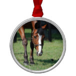 Gorgeous Quarter Horse Metal Ornament