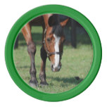 Gorgeous Quarter Horse Poker Chips