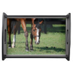 Gorgeous Quarter Horse Serving Tray