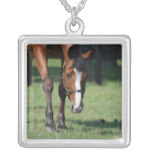 Gorgeous Quarter Horse Silver Plated Necklace