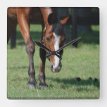 Gorgeous Quarter Horse Square Wall Clock