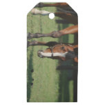 Gorgeous Quarter Horse Wooden Gift Tags