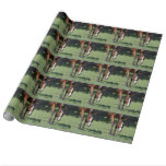 Gorgeous Quarter Horse Wrapping Paper