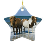 Horse Beach Ornament