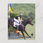Horses Eventing  Postcard