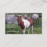 Indian Pony Business Card