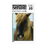 Mustang Postage Stamp