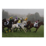 Race Horse Poster Print
