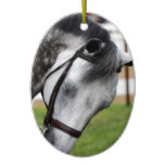 Sweet Appaloosa Horse Ceramic Ornament