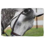 Sweet Appaloosa Horse Hand Towel