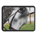 Sweet Appaloosa Horse Hitch Cover