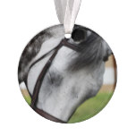 Sweet Appaloosa Horse Ornament