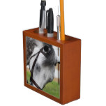 Sweet Appaloosa Horse Pencil Holder