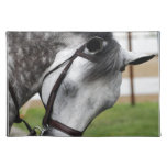Sweet Appaloosa Horse Placemat