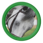 Sweet Appaloosa Horse Poker Chip Set