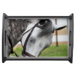 Sweet Appaloosa Horse Serving Tray