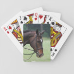 Sweet Arabian Horse Deck of Cards