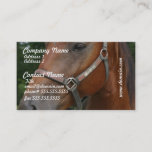 Sweet Chestnut Horse Business Cards