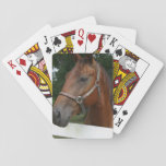 Sweet Chestnut Horse Deck of Cards
